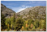 Trail to Shadow Lake, Ansel Adams Wilderness