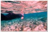 Grand Cayman Island 2013