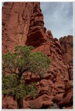 Fisher Towers 4