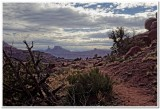 View from Fisher Towers
