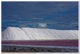 Salt works and red concentrating pond