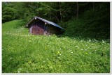 Near Partnach Gorge, Garmisch-Partenkirchen