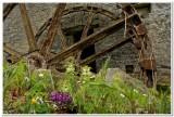 Water Wheel, Bective Mill, Ireland