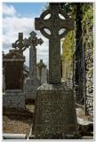 Graveyard, Ardcath Church, Ireland