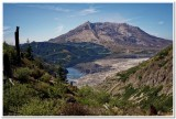 Mount St. Helens from Norway Pass