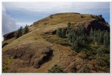 Summit Trail, Saddle Mountain
