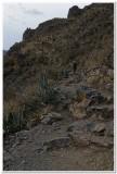 Pinkuylluna trail