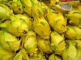 P1010016_yellow_pitaya_8.jpg