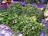 P1010018_herbs_8.jpg