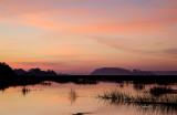Morning Salt Marsh