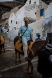 Riding Donkeys up hill in Santorini