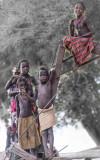Dassanech Tribe