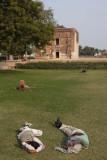 Sikandra, near Akbar's Mausoleum