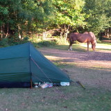 TENT AND HORSE