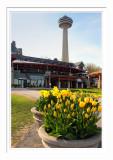 Niagara Skylon Tower