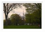 Toronto Island 3