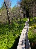 Appalchian Trail from Rt 15, Monson, to Rt 201, Caratunk, Maine, USA