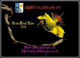 QGNT 75 Vinh Danh Me 2016