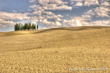 Val d'Orcia (Siena)