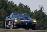 17th 7-GT2 Tommy Milner/Tom Sutherland Panoz Esperante GTLM  (EGTLM 003b)