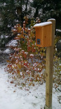 Winter roost box