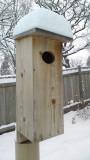 Wood duck box