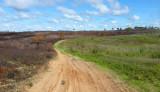 Moquah Barrens State Natural Area_748.jpg