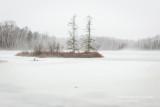 Winter 15/16