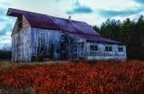 The old barn in Ossipee. Fujifilm similutation Velvia Vivid