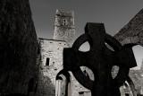 2014 Timoleague Abbey B&W (Ireland)