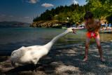 2015 At The Lake Ohrid (Macedonia)