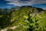 2016 ☆ West Tatra ☆ Kasprowy Wierch to Czerwone Wierchy and Mala Laka Valley up to Giewont (Poland)
