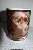 sasha's mug on my mug (IMG_5667.jpg)