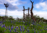 Bluebonnet Windmill