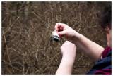 Extracting a chickadee