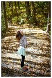 Poet's Walk and Ferncliff Forest October '14