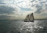 106 103 New York Harbor 7.jpg