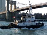 167 177 2 east river 2011.jpg