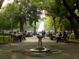 224 215 16 Washington Square Park.jpg