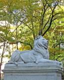 306 297 7 NY Public Library Lion 4.jpg