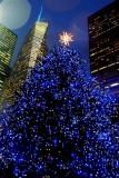318 295 20 378 Bryant Park Tree 2012.jpg
