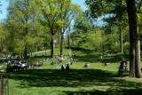 393 406 Central Park near pond 1.2013 1..jpg