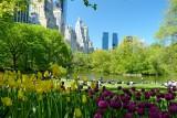 394 406 Central Park pond 4.2013 1.jpg