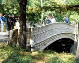399 409 2 Pine Bank Bridge, 62nd st.jpg