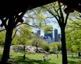 401 413 Central Park from the dairy 2013.JPG