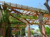 403 420 Central Park Zoo 2013 1.JPG