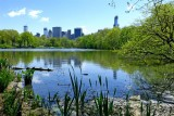 423 432 Central Park Lake 5.2013 3.jpg