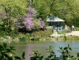424 432 Central Park Lake 5.2013 7.jpg