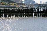454 483 4 Riverside Park South.jpg
