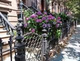 496 602 2 Park Slope  Brooklyn 2011.jpg